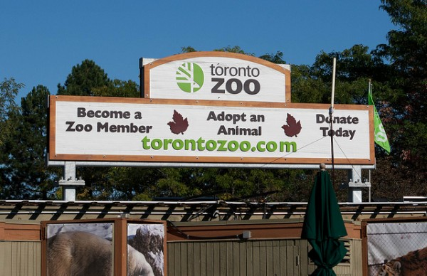 Toronto Zoo,  ©Aasen Ryan Family/Flickr