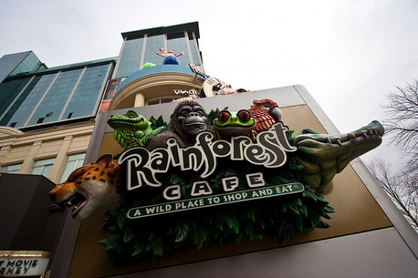 Rainforest Café, ©Derek Purdy/Flickr